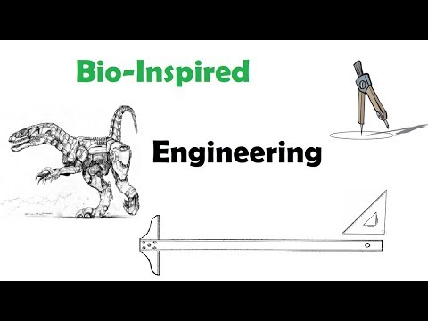 Bio Inspired Engineering and Theo Jansen Mechanism