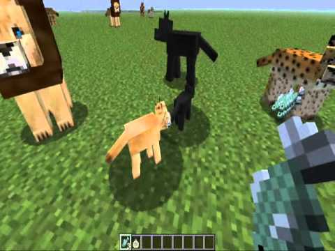 Big Cat Taming Mo Creatures