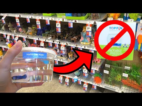 What Items NOT TO BUY For BETTA FISH TANK!