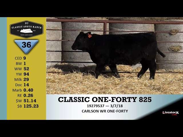 Classic Angus Ranch Lot 36