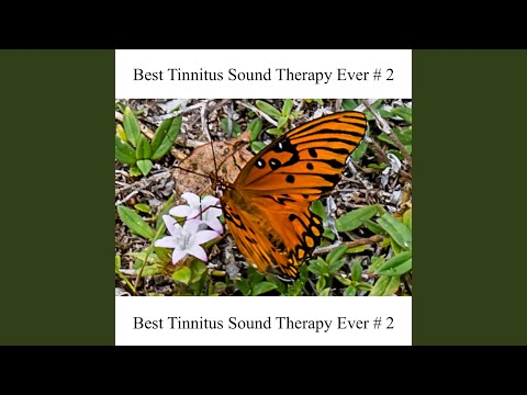 best-tinnitus-sound-therapy-ever-#-2