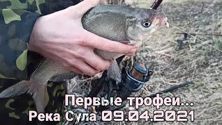Первые трофеи Река Сула весна 09 04 2021 Удачный выезд на рыбалку хороший клёв Плотвы Ричка Сула