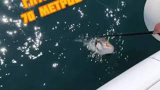 Морская рыбалка на Камчатке
