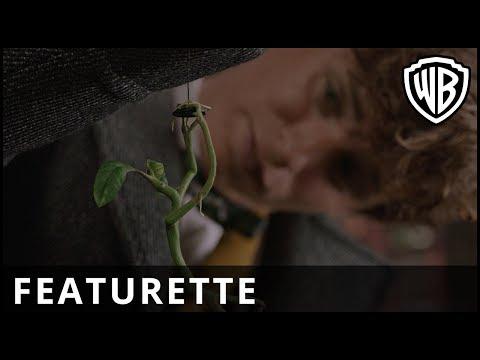 Fantastic Beasts: The Crimes of Grindelwald - Newt's New Menagerie - Warner Bros. UK