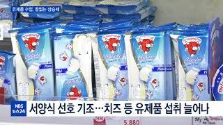 유제품 수입 폭주···우유 수입 5년새 10배 증가