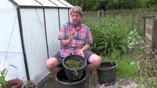 How To Make Free Natural Organic  Rich Plant Food Fertilizer From Nettles Or Comfrey