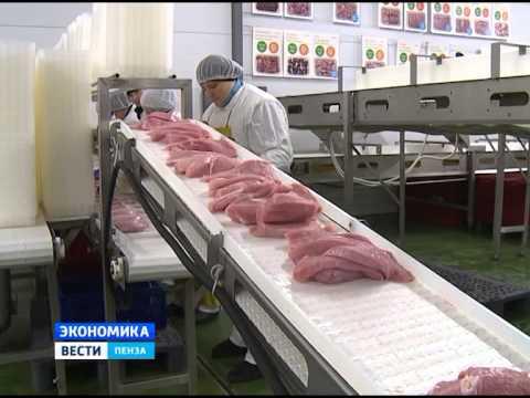 Компания «Дамате» планирует в разы увеличить производство в Пензенской области