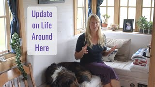 Update on Life Around Here - Life in a Tiny House called Fy Nyth