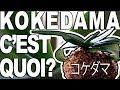 [Orchidées] Comment réaliser un Kokedama?