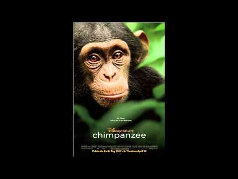 DisneyNature Chimpanzee (2012) Movie Review