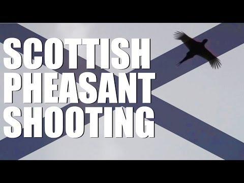 Scottish pheasant shooting at the Aberarder estate