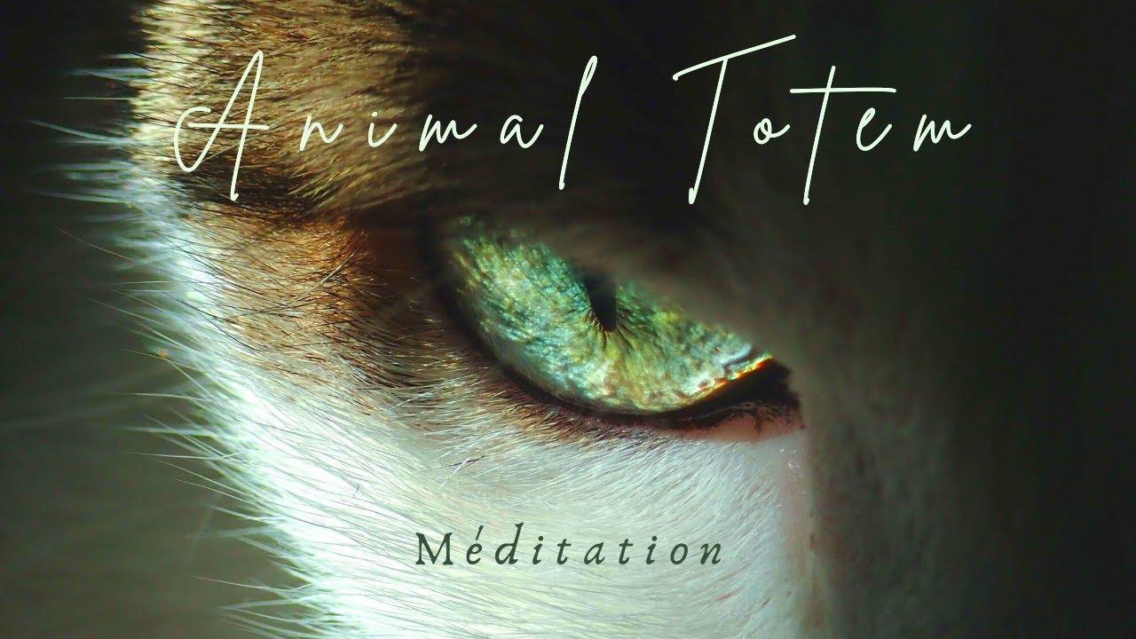 Méditation Guidée - Animal Totem - Pouvoirs Retrouvés et Messages Délivrés