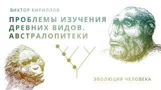 Проблемы изучения древних видов. Австралопитеки. Происхождение приматов. Происхождение человека - 6