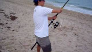 Beach Shark Fishing