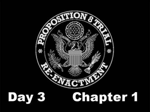 Prop 8 Trial Re-enactment, Day 3 Chapter 1 (re-edit)