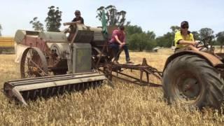 Vintage Harvest 2015 Australia
