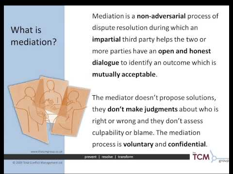 Mediation for the Small and Medium Sized Business Webinar