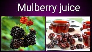 Mulberry juice   Easy way to make mulberry juice   Tasty and healthy recipe