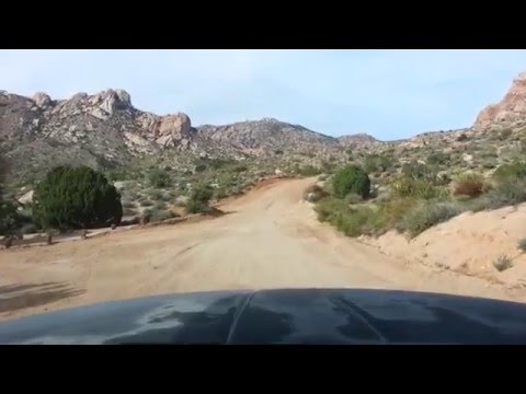 christmas tree pass nevada off road