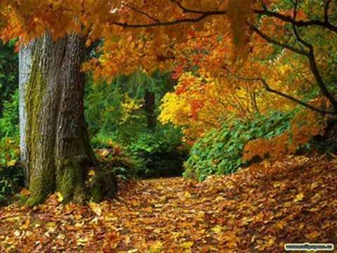 richard-clayderman-autumn-leaves-ferrariboeing