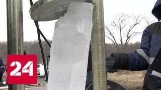 Молодые ученые из разных стран исследуют лед на острове Русский - Россия 24