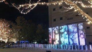 京都のローム株式会社が会社周辺で行っている86万球の輝く京都最大級の...