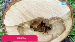 12 Materiales compuestos Materiales y materias primas