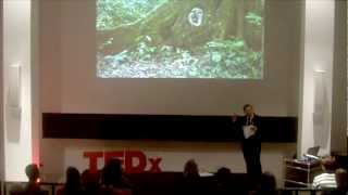 Goldrush in the Jungle: Dan Drollette at TEDxFulbright