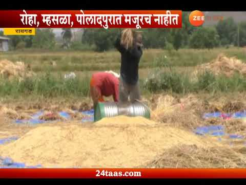 Raigad No Workers Available For Farming Work