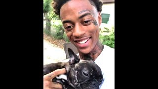 FUNNIEST BOONK STEALING VINES COMPILATION