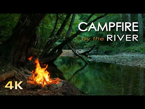 4K Campfire by the River - Relaxing Fireplace \u0026 Nature Sounds - Robin Birdsong  - UHD Video - 2160p