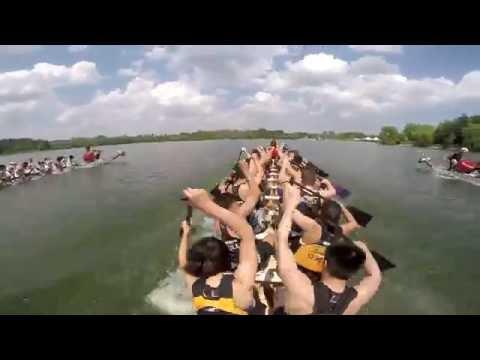 Milton Dragon Boat Race Festival 2016: Race 29 - 500m Grand Final - Iron Dragons Blue