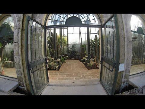 Salento di charme? Giardini Botanici La Cutura: visita drone del Bed and Breakfast Tana del Riccio!