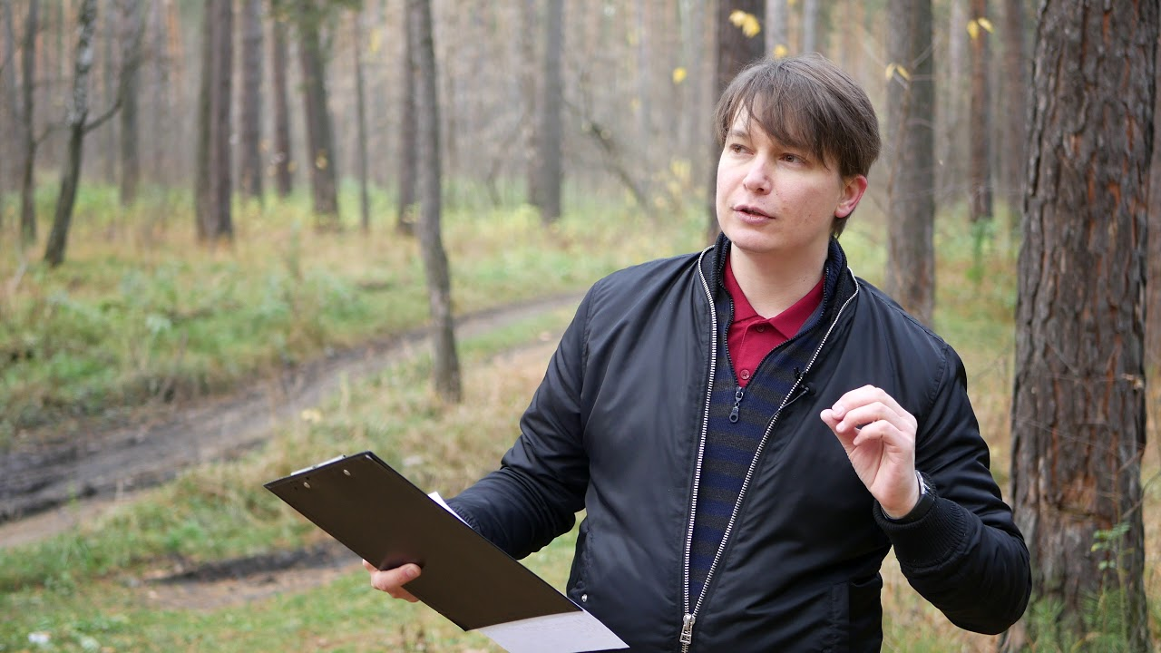 ОВЕН 3 событие 6, 9 ноября Гороскоп