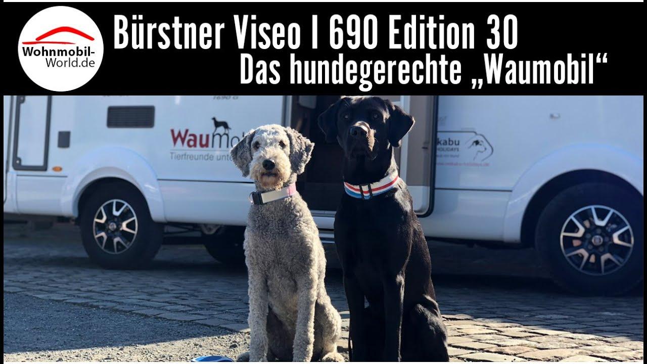 Bürstner Viseo I 690 Edition 30 Als Waumobil Hundegerecht Reisen