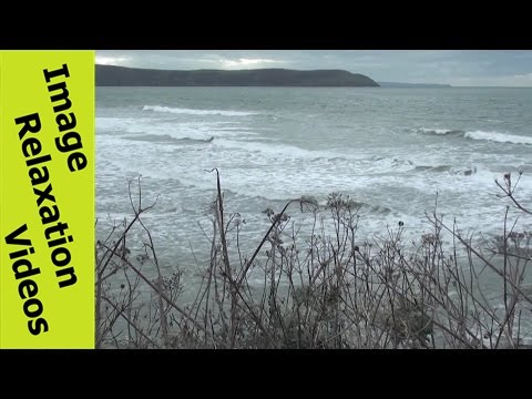 Ocean Waves, Beach & Peninsula, Plants + Ocean Quotes & Relaxing Music Ambient Background