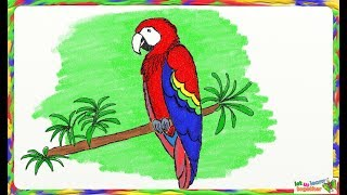 Drawing a simple macaw or parrot | How to draw a parrot or macaw bird |  Drawing for kids