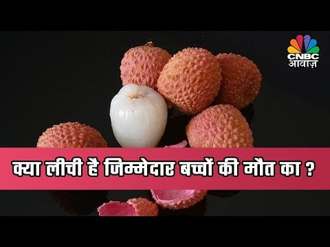 Bihar Encephalitis Deaths Linked To Litchis: Precautions To Take While Consuming The Fruit