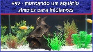 видео Aquario