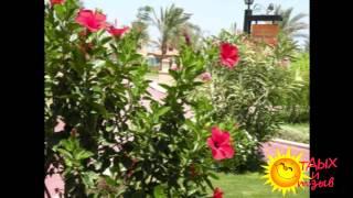 Отзывы отдыхающих об отеле ALBATROS PALACE 5 * г.Хургада (ЕГИПЕТ)(Отдых в Египте для Вас будет ярче и незабываемым, если Вы к нему будете готовы: купите тур в Египет, а именно..., 2014-12-07T09:33:27.000Z)
