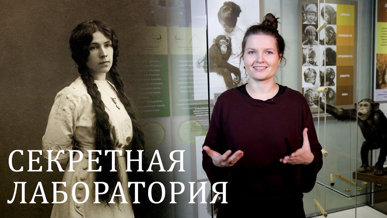 Зоопсихология и секретная лаборатория Дарвиновского музея. Елена Сударикова.