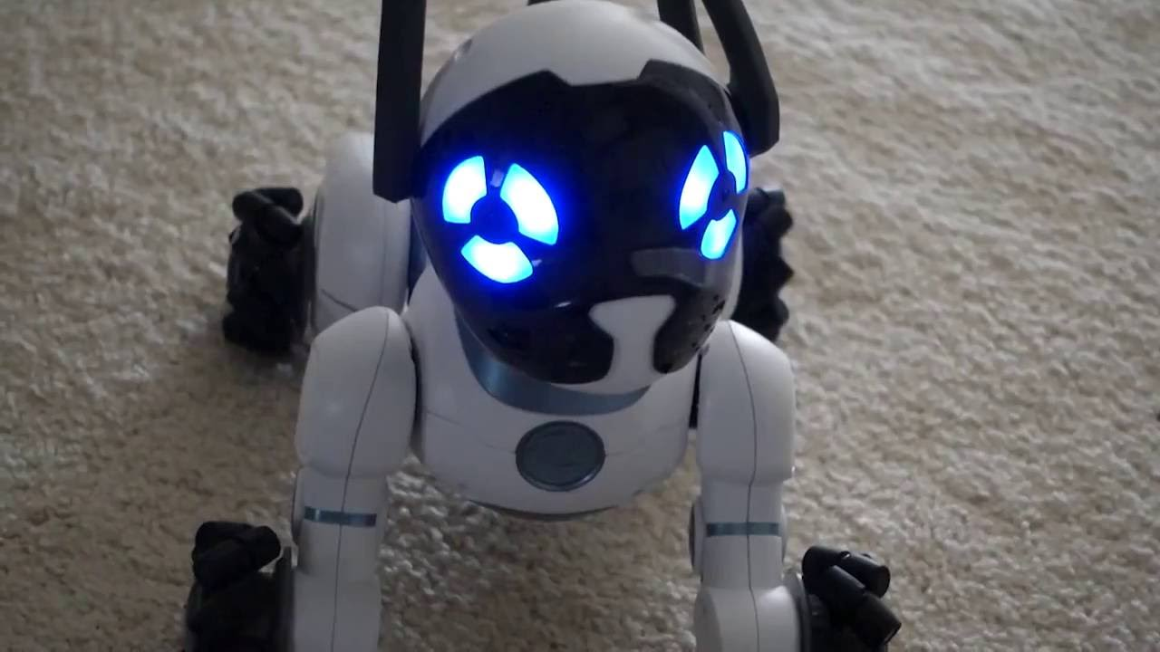 Robot Pet Dog of the Future! WowWee CHiP Interactive Robot Pet Dog DEMO 2016