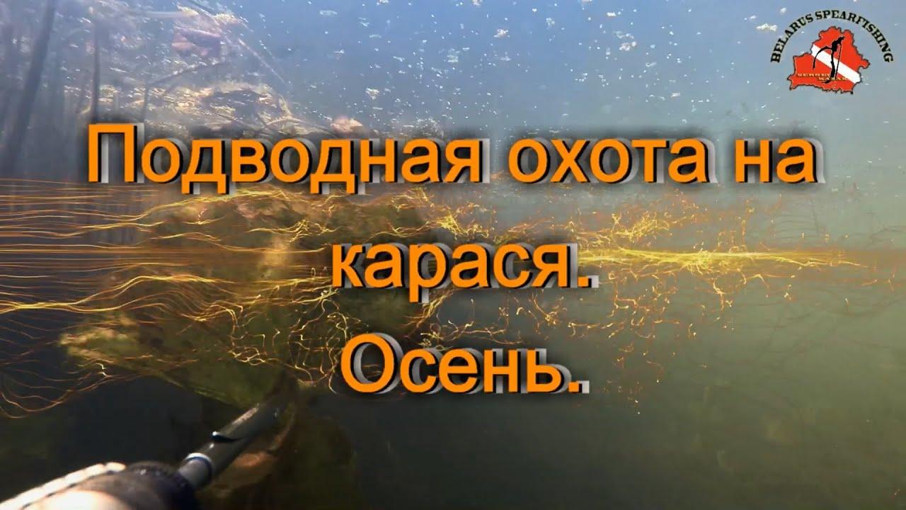 подводная охота на толстолоба видео
