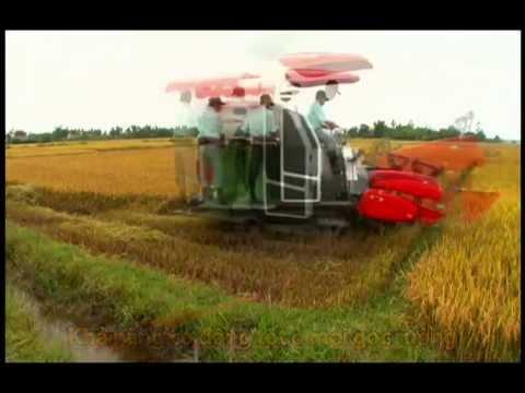 Máy gặt đập liên hợp Kubota DC 70 Công ty CP Công nông nghiệp Việt Mỹ - Liên hệ mua hàng:0978971102