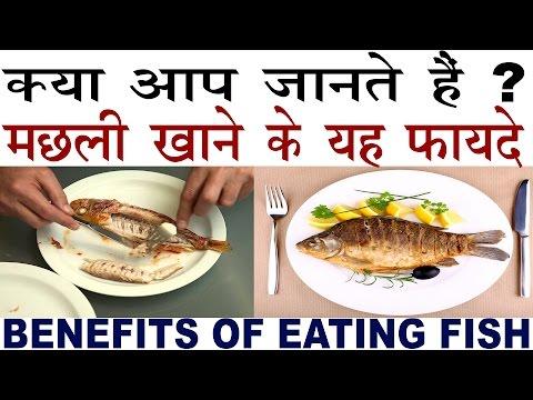 Fish Food से मिलते हैं बहुत हैरान कर देने वाले फायदे | Benefits Of Fish Food In Hindi
