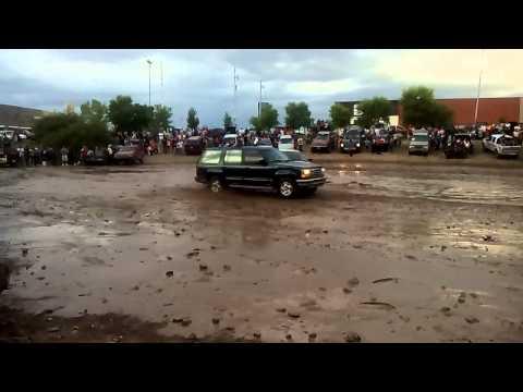 Atascadero de chihuahua en el rio sacramento