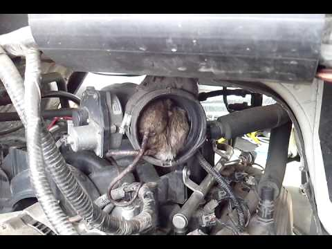 La Peor Falla En Camioneta Ford Youtube
