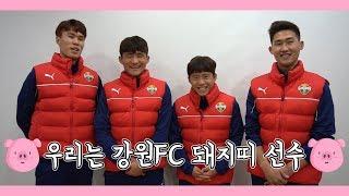 2019 돼지띠 선수 새해 인사