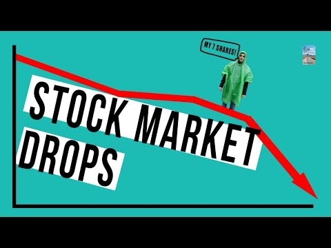 Stock Market DROPS 400 Points After Apple, Amazon, Facebook and Tech Shares FALL!