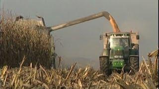 L'agricoltura va bene, ma gli agricoltori soffrono